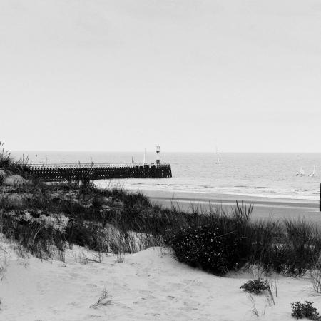 Bord de mer en noir et blanc